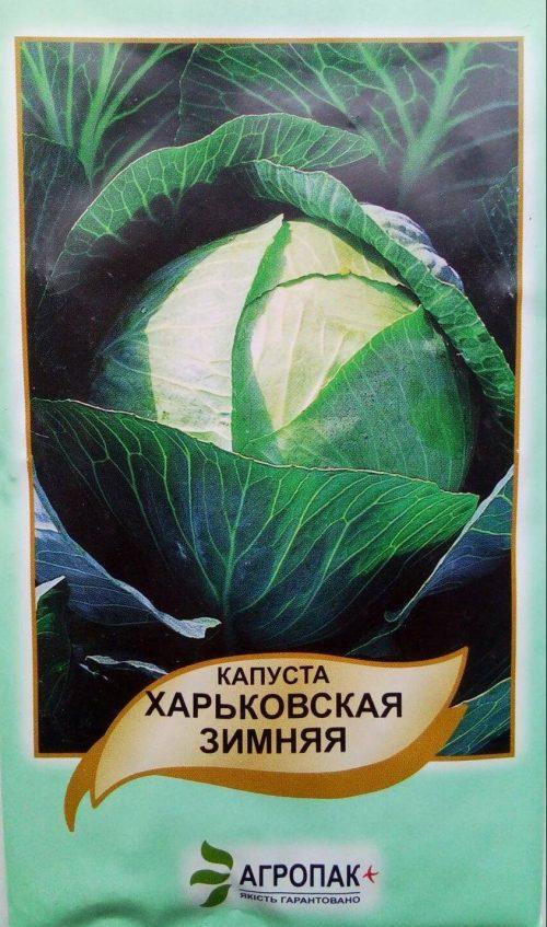 капуста білоголова Харківська зимова