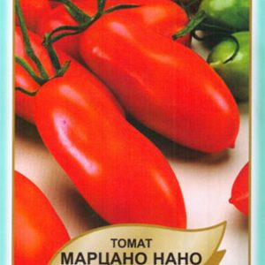помідор Марцано нано
