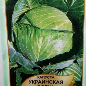 капуста білоголова Українська осінь