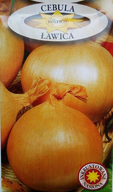 насіння цибулі Лавіца, польське насіння