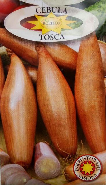 цибуля Тоска, польське насіння